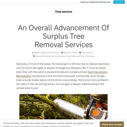 An Overall Advancement Of Surplus Tree Removal Services