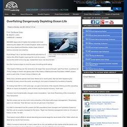 Overfishing Dangerously Depleting Ocean Life