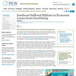 Southeast Suffered Millions in Economic Losses from Overfishing