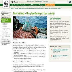 Overfishing – the plundering of our oceans