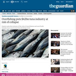 Overfishing puts $42bn tuna industry at risk of collapse