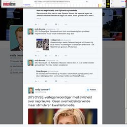 """rudy bouma on Twitter: """"(87) OVSE-vertegenwoordiger mediavrijheid over nepnieuws: Geen overheidsinterventie maar stimuleren kwaliteitsmedia."""
