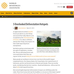 5 Overlooked Deforestation Hotspots