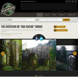 """The Overtoun or """"Dog Suicide"""" Bridge"""