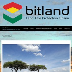 Overview – Bitland