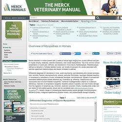Overview of Myopathies in Horses: Myopathies in Horses: Merck Veterinary Manual