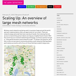 Scaling Up: An Overview of Large Mesh Networks