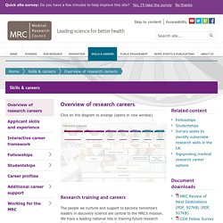Overview of research careers - Skills & careers - Medical Research Council