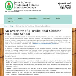 An Overview of a Traditional Chinese Medicine School