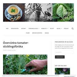Övervintra tomater- sticklingsföröka