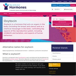You and Your Hormones from the Society for Endocrinology