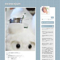ozawajun (tumblr)