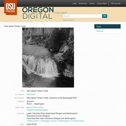 Pacific Northwest Stream Survey