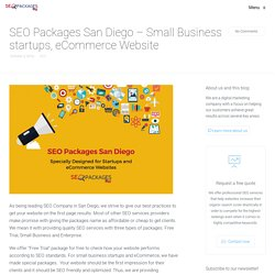 SEO Packages San Diego - Small Business startups, eCommerce Website