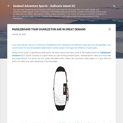 PADDLEBOARD TOUR CHARLESTON ARE IN GREAT DEMAND