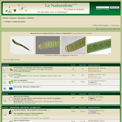 Page d'index • Le Naturaliste