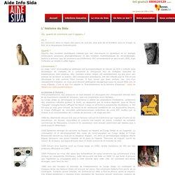 Page L histoire du Sida