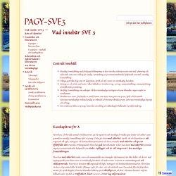 PAGY-SVE3