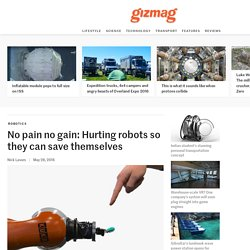 No pain no gain: Hurting robots so they can save themselves
