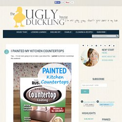 I Painted My Kitchen Countertops - The Ugly Duckling House