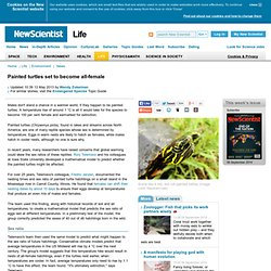 Painted turtles set to become all-female - life - 03 May 2013