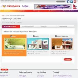 Painting budget Nepal