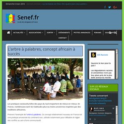 L'arbre à palabres, concept africain à succès - Senef.fr