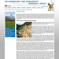 Palaeobiology and Biodiversity Research Group, Department of Earth Sciences, University of Bristol