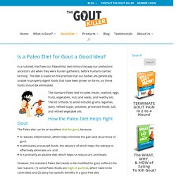 The Paleo Diet for Gout? Absolutely It Works!