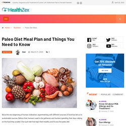 Paleo Diet Meal Plan and Things You Need to Know
