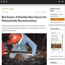 Bat Guano: A Possible New Source for Paleoclimate Reconstructions