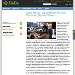iDigBio and Yale Peabody Museum Announce Paleontology Digitization Workshop