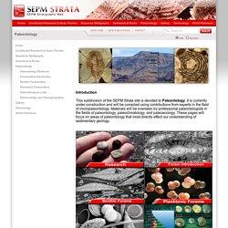 Paleontology - SEPM Strata