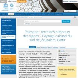 Palestine : terre des oliviers et des vignes – Paysage culturel du sud de Jérusalem, Battir