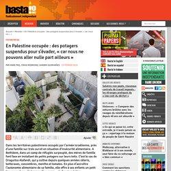 En Palestine occupée : des potagers suspendus pour s'évader, « car nous ne pouvons aller nulle part ailleurs