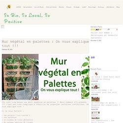 Mur végétal en palettes : On vous explique tout !!!