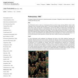 Palimsestos / Joan Fontcuberta / Projects / àngels barcelona
