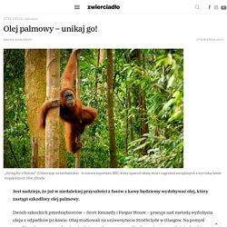 Olej palmowy – unikaj go! – Zwierciadlo.pl