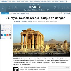 Palmyre, miracle archéologique en danger