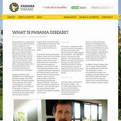 Le site PANAMA DISEASE_ORG.