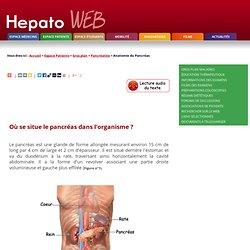 Pancréatite aiguë et chronique : Anatomie du Pancréas