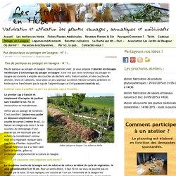 Pas de panique cultiver sans travail du sol grâce au potager en lasagne