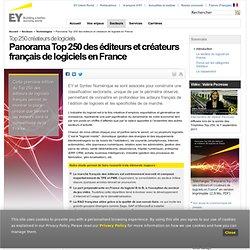Panorama Top 250 des éditeurs et créateurs de logiciels en France