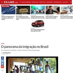 O panorama da imigração no Brasil
