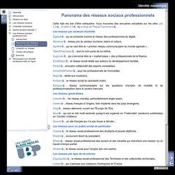 Panorama des réseaux sociaux professionnels