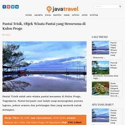 Pantai Trisik, Objek Wisata Pantai yang Memesona di Kulon Progo