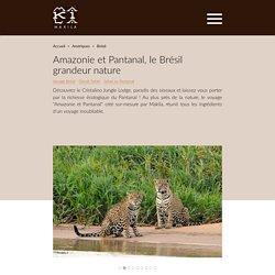 Le Pantanal et l'Amazonie