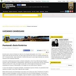 Pantanal: cheia histórica