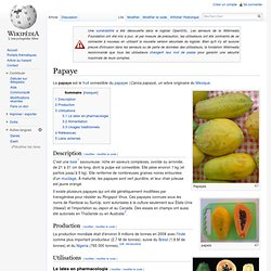 WIKIPEDIA – Papaye.