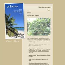 Médecine des plantes - LADOGRAVE